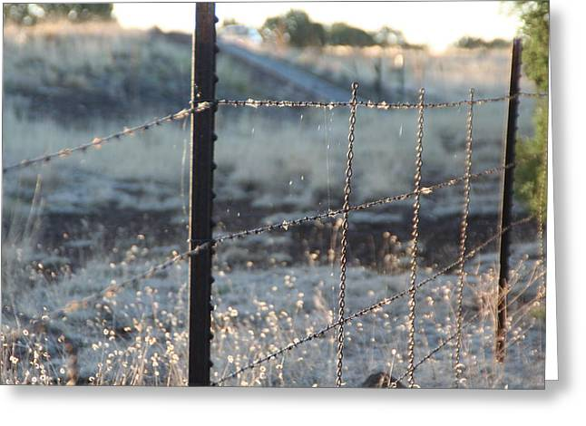 Fence Greeting Card by David S Reynolds