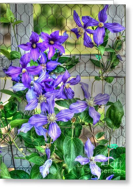 Fence Flowers Greeting Card by Myrna Bradshaw