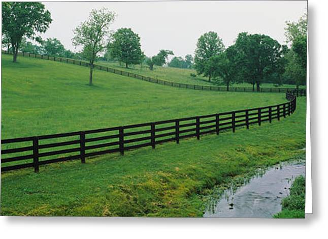 Fence In A Field, Woodford County Greeting Card