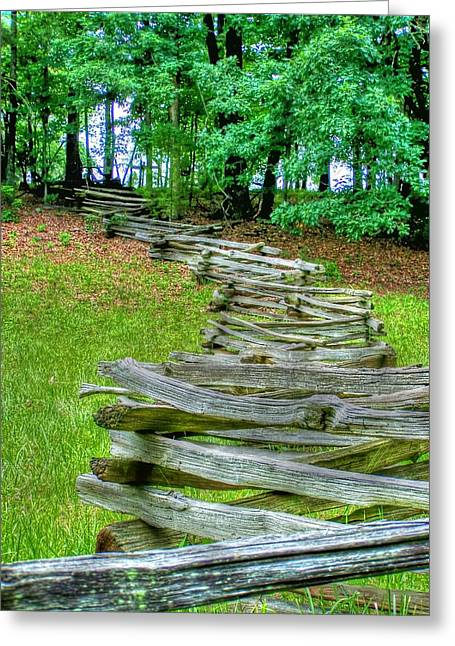 Fence Line Greeting Card by Dan Stone
