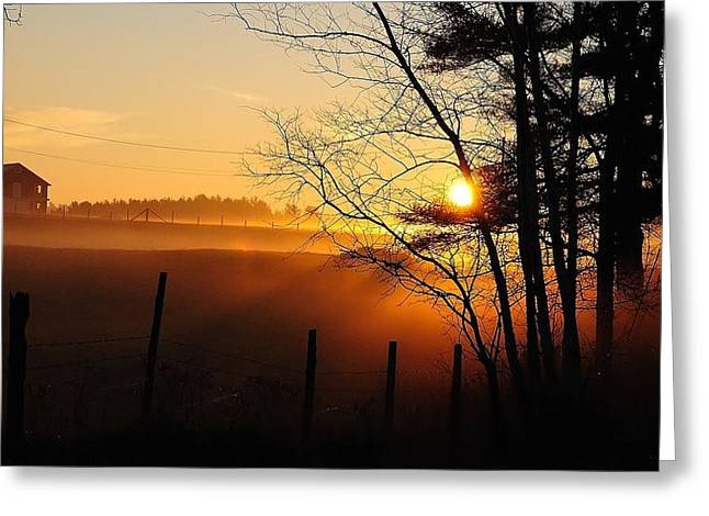 Fence Line Greeting Card by Paul Noble