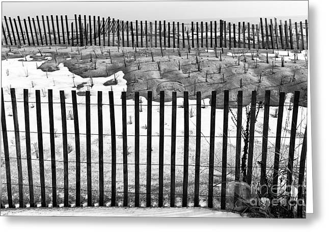 Fence Lines Mono Greeting Card by John Rizzuto