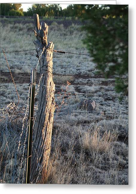 Greeting Card featuring the photograph Fence Post by David S Reynolds