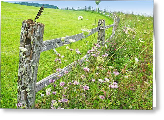 Fence Post Greeting Card by Melinda Fawver