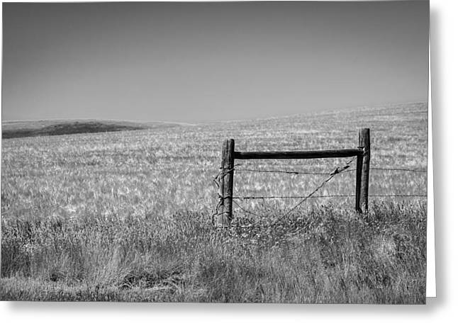 Fence Post Near Choteau Montana Bw Greeting Card by Rich Franco