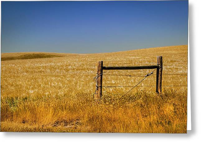 Fence Post Near Choteau Montana Greeting Card by Rich Franco
