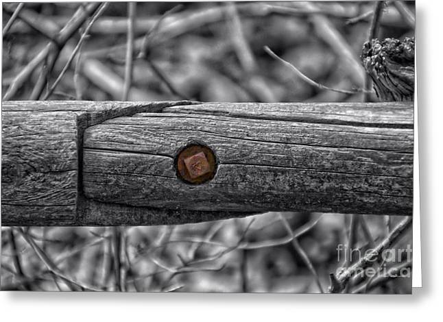 Fence Rail With Rusty Bolt Greeting Card by Thomas Woolworth