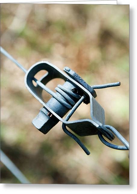 Fence Wire Tightener Greeting Card by Gustoimages/science Photo Library