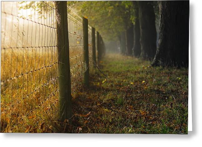 Fenced Off Greeting Card by Chris Fletcher