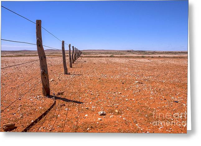 Fenceline Outback Australia Greeting Card by Colin and Linda McKie