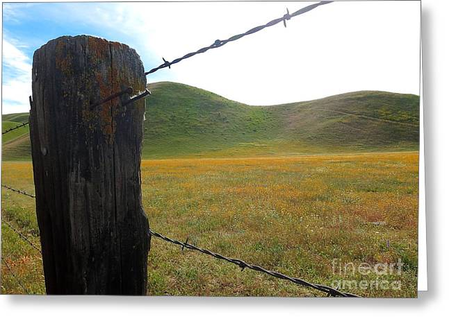 Fencepost On The 58 Greeting Card