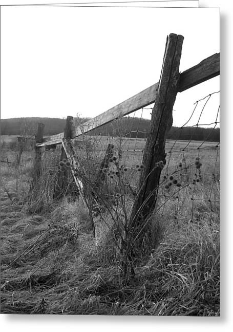 Fences Black And White I Greeting Card