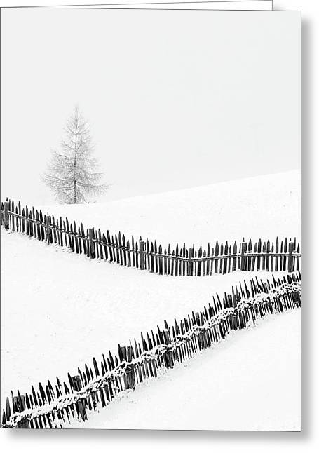 Fences: Playing With Lines Greeting Card