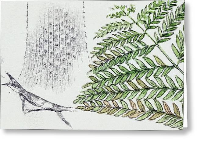 Fern And Ancient Lizard Greeting Card by Deagostini/uig