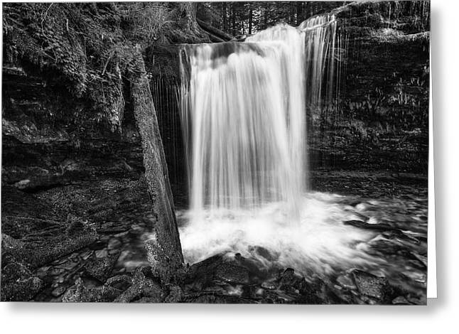 Fern Falls Black And White Greeting Card by Mark Kiver