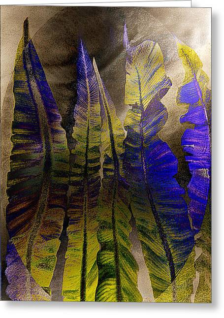 Fern Forest Greeting Card by Paula Ayers