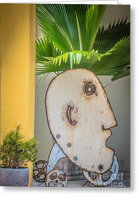 Fern Head Key West - Hdr Style Greeting Card by Ian Monk