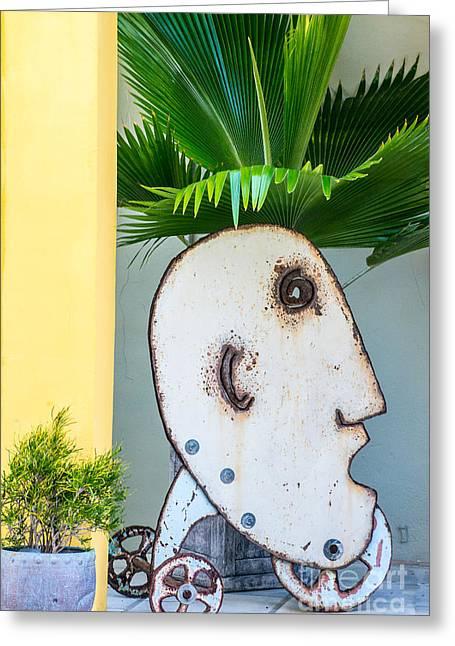 Fern Head Key West Greeting Card