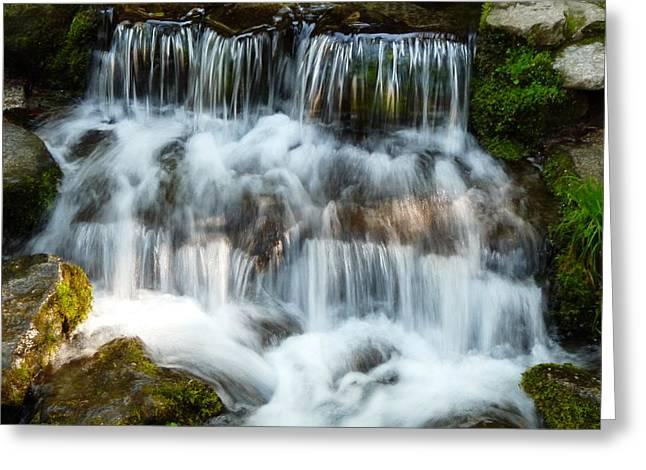 Fern Spring Yosemite Greeting Card by Jeff Lowe
