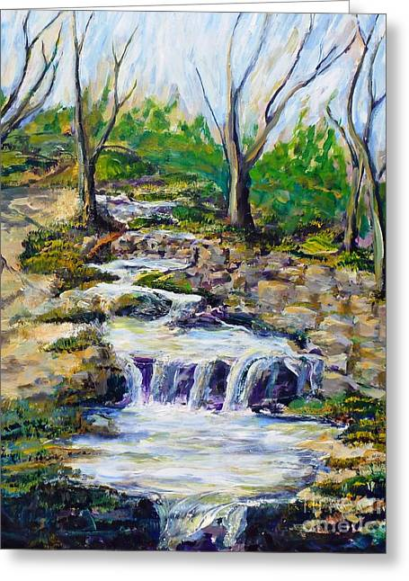Ferndell Creek Noon  Greeting Card by Randy Sprout