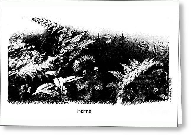 Ferns Greeting Card