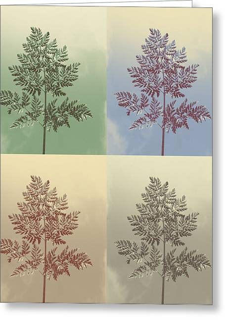 Ferns Times Four Greeting Card by Andrea Dale