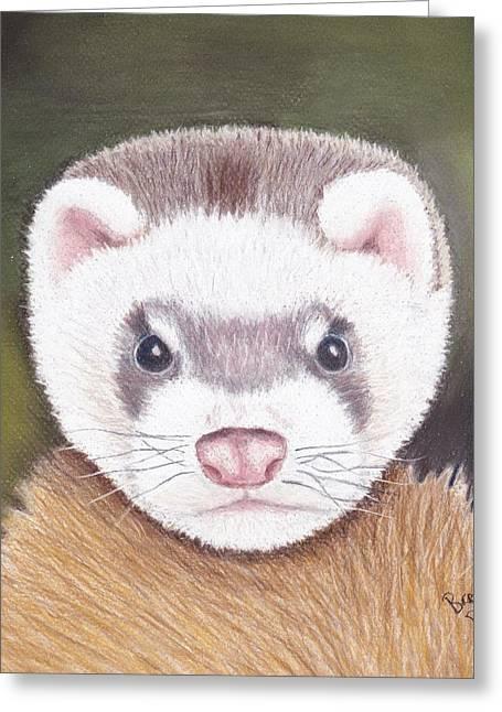 Ferret Greeting Card by Brenda Bonfield