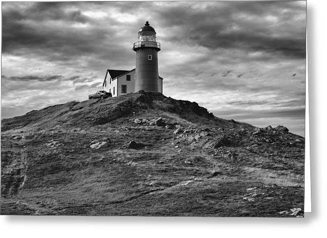 Ferryland Lighthouse Greeting Card