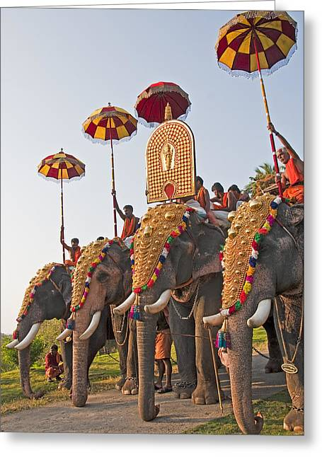 Greeting Card featuring the photograph Kerala Festival Elephants by Dennis Cox WorldViews