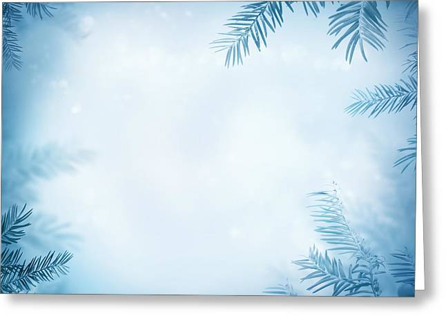 Festive Winter Background Greeting Card