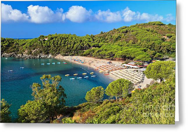 Fetovaia Beach - Elba Island Greeting Card