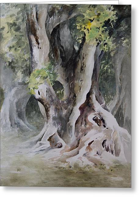 Ficus Aurea Greeting Card by Rachel Christine Nowicki