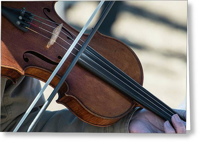 Fiddle Being Played (large Format Sizes Greeting Card by Sheila Haddad