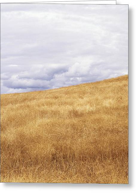 Field And Sky Near Rock Creek, South Greeting Card by Bert Klassen