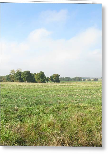 Field In France Greeting Card by Randi Kuhne