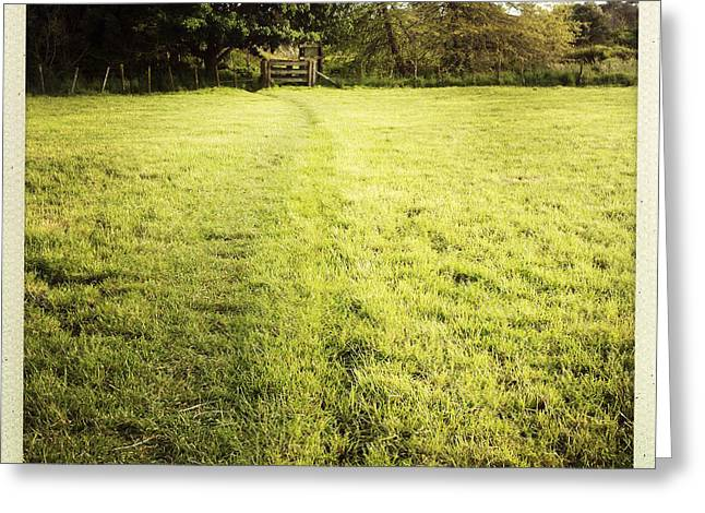 Field Greeting Card by Les Cunliffe