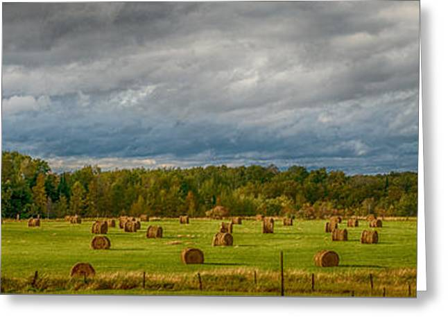 Field Of Bales Greeting Card