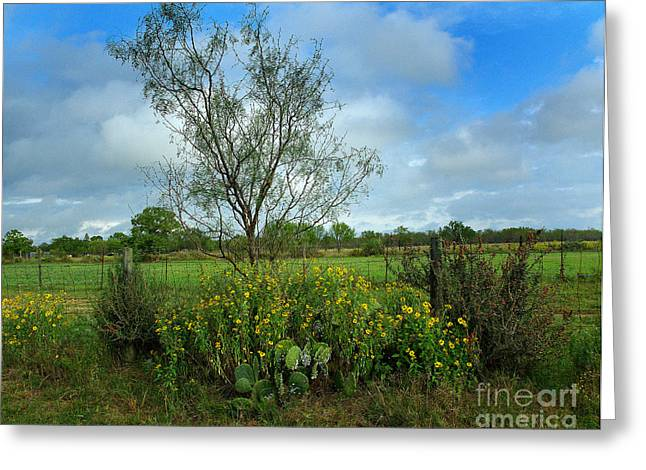 Field Of Beauty And Danger Greeting Card by Peter Piatt