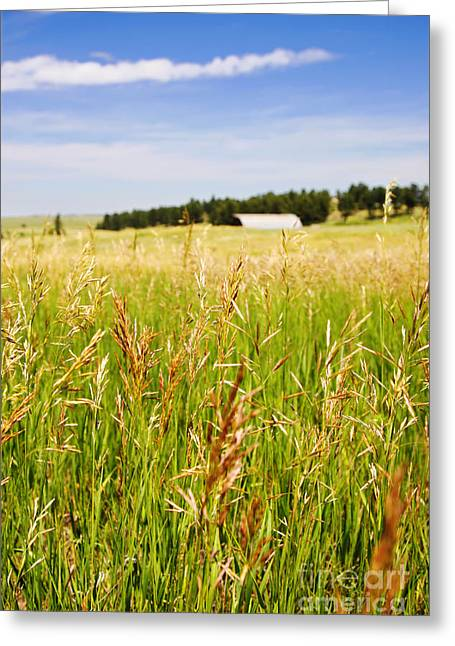 Greeting Card featuring the photograph Field Of Brome Grass With Barn by Lincoln Rogers