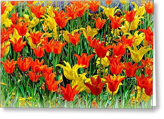 Field Of Dreams........ Greeting Card by Tanya Tanski