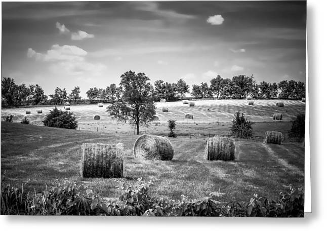 Field Of Hay In Black And White Greeting Card
