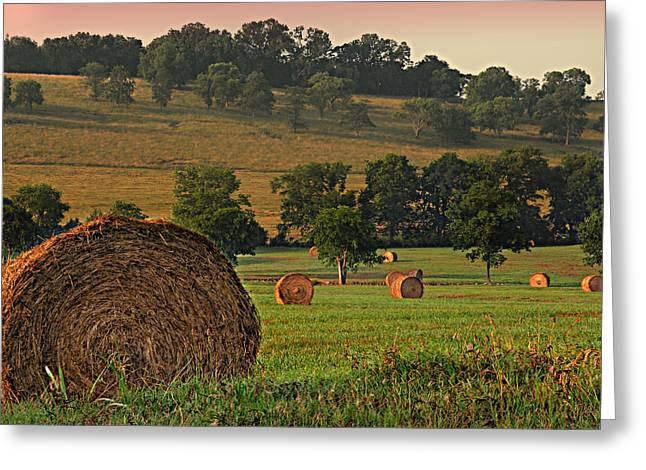 Field Of Hay Greeting Card by Steven Michael