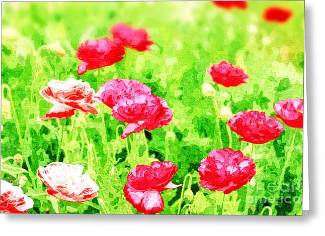 Field Of Painterly Red And Orange Poppies Greeting Card