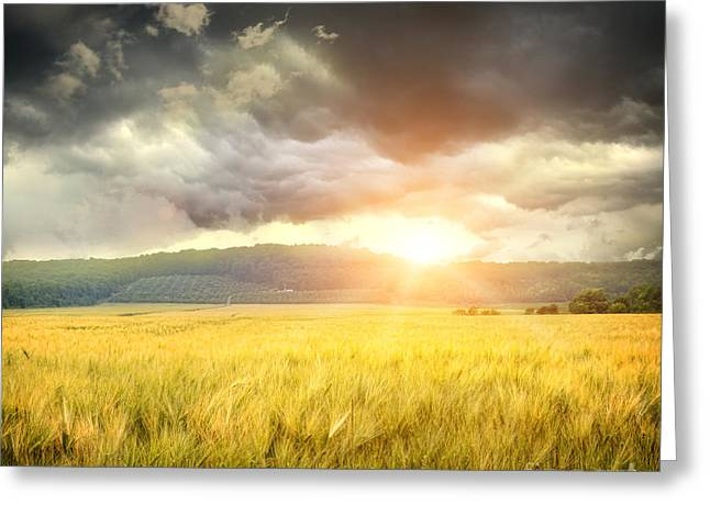 Field Of Wheat With Ominous Clouds  Greeting Card by Sandra Cunningham
