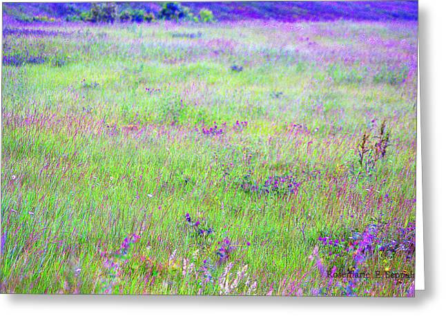 Field Of Wildflowers Greeting Card by Rosemarie E Seppala