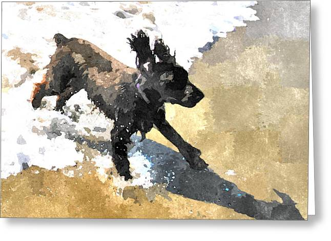 Field Spaniel Joy Greeting Card
