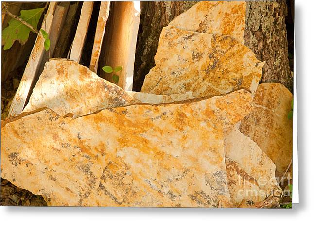 Greeting Card featuring the photograph Field Stones by Lena Wilhite