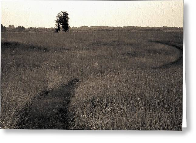 Field Ways Greeting Card by Yevgeni Kacnelson