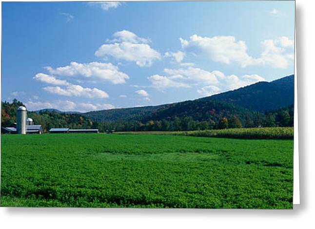 Field With A Silo In The Background Greeting Card by Panoramic Images