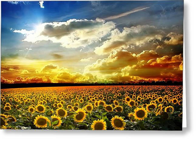 Field With Sunflowers Greeting Card by Boon Mee